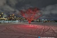 Пример украшения города на Новый год - Design-pro.kz - фото 163