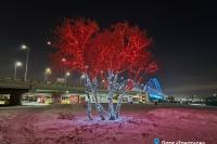 Пример украшения города на Новый год - Design-pro.kz - фото 173